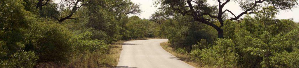 strade del kruger