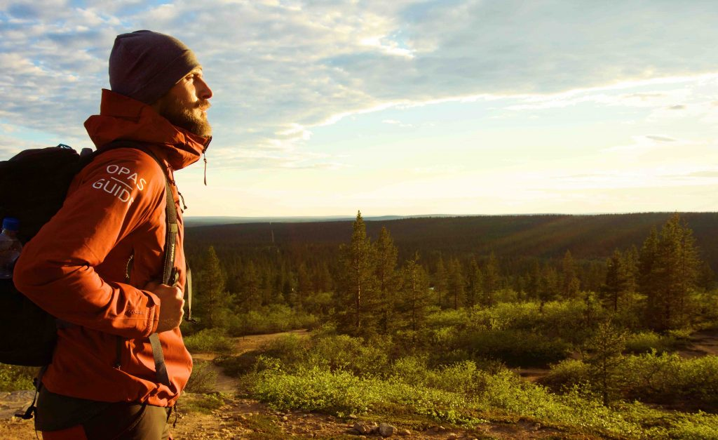 finlandia foreste