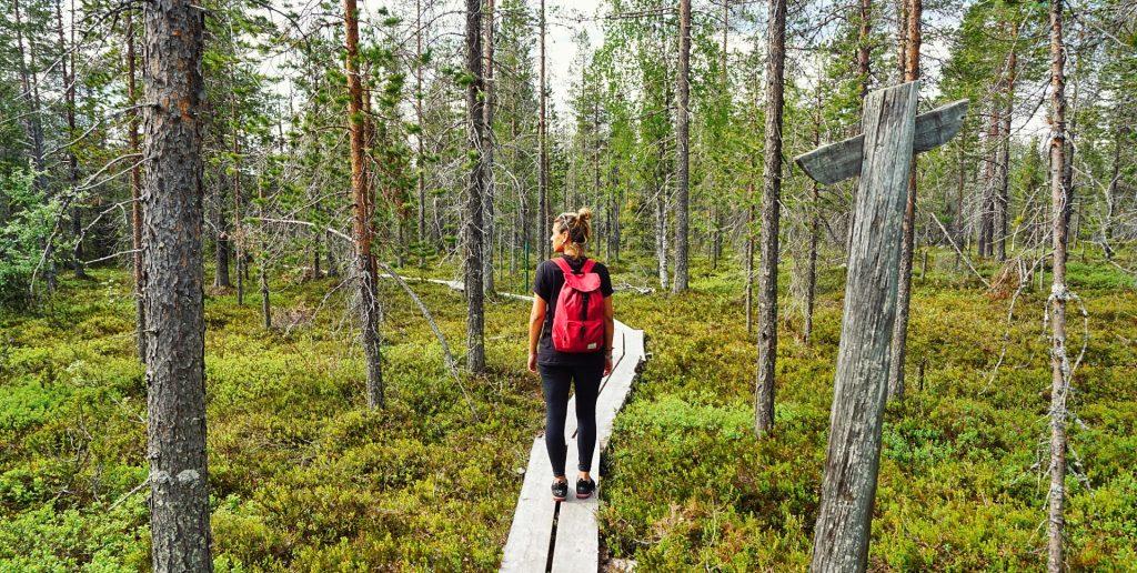 cosa fare finlandia