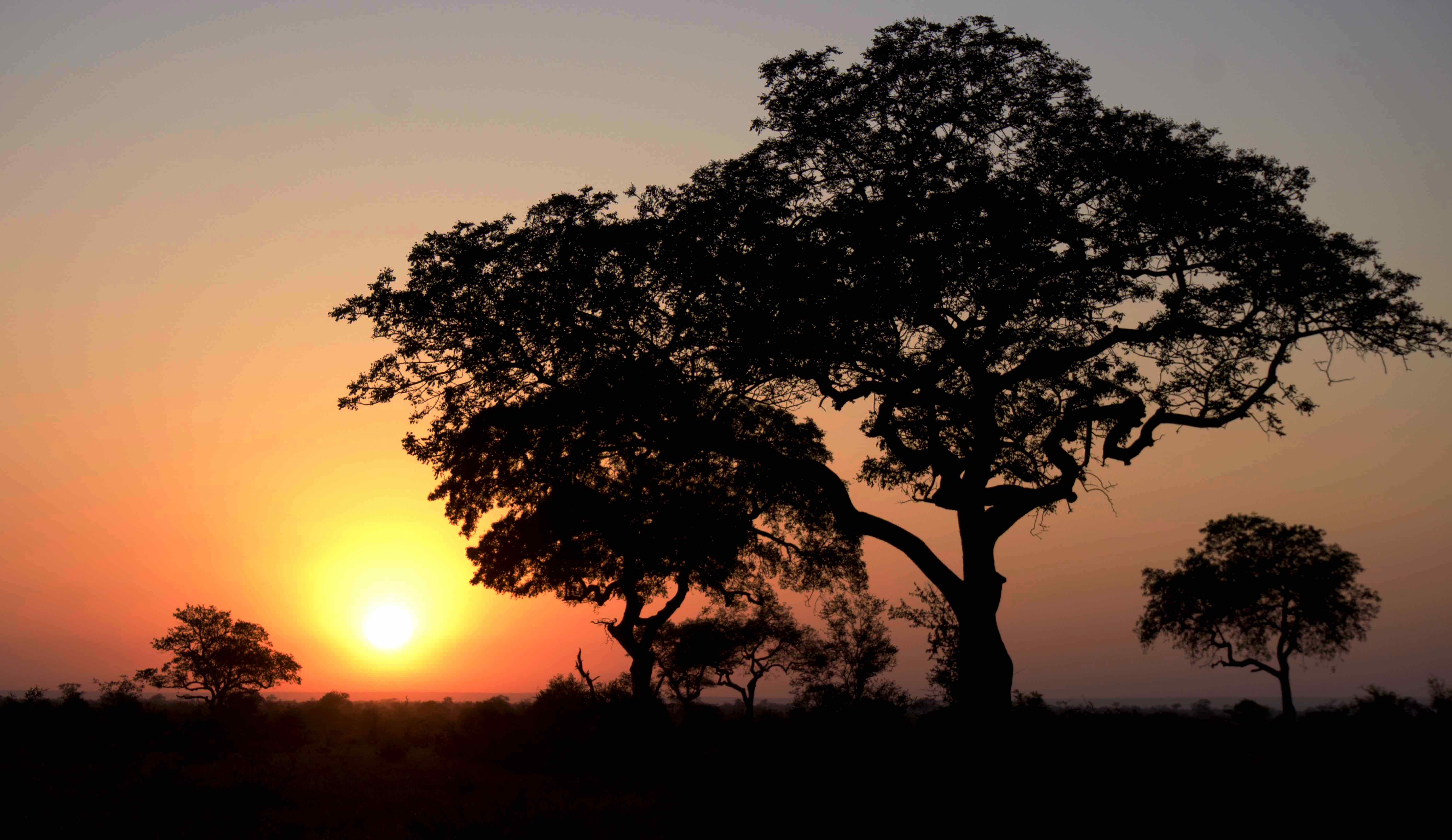 Itinerario SUDAFRICA fai da te: 1 PARTE